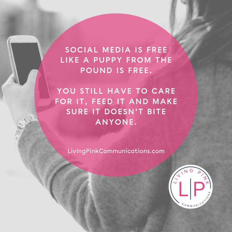 LP Quotes_ Social Media Puppy.png