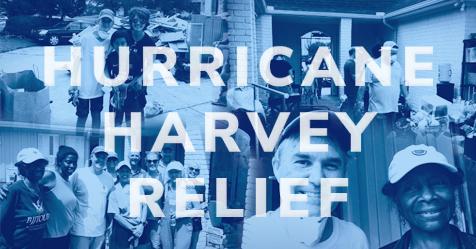Harvey-FB-Collage.jpg