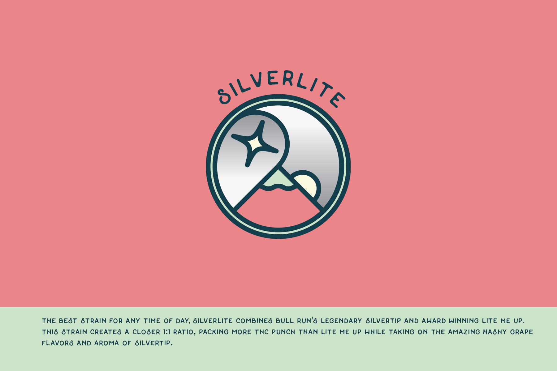 BRCC-icons-silverlite.jpg