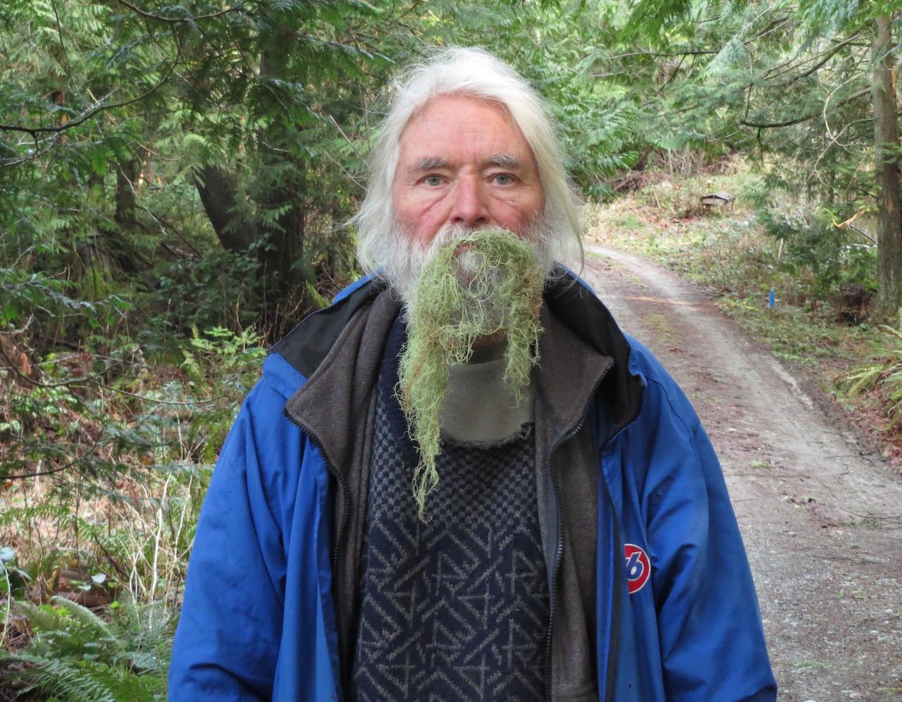 Usnea Lichen (Old Man's Beard)