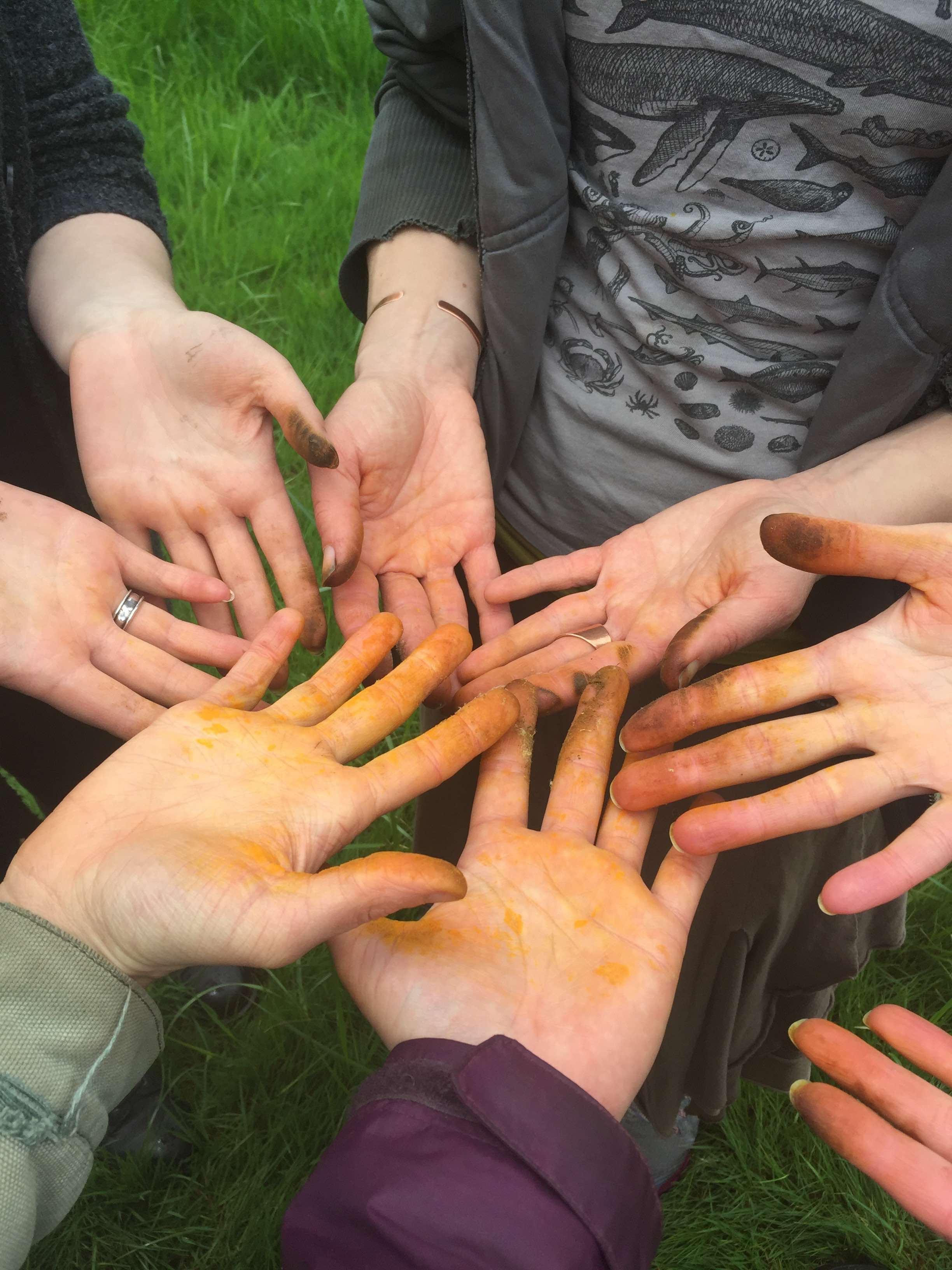 Dandelion Hands