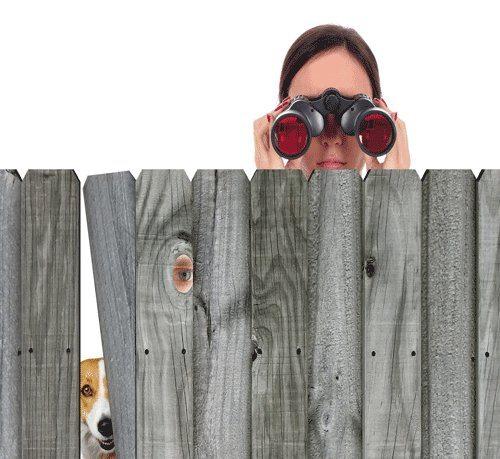 nosy-neighbours.jpg