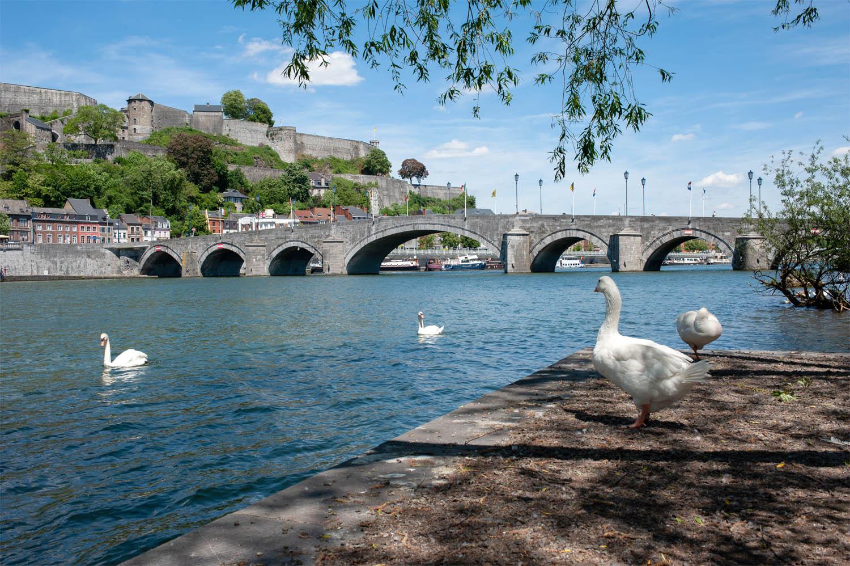 Namur_1MOIS_1VILLE_Vue de Jambes 5.jpg