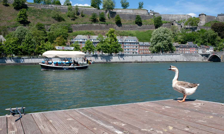 Namur_1MOIS_1VILLE_Vue de Jambes 9.jpg