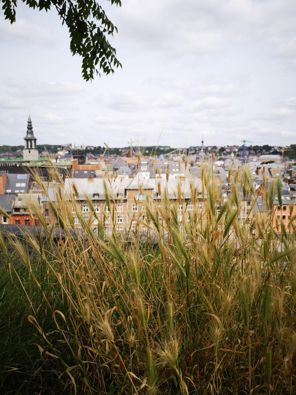 Namur_1MOIS_1VILLE_Citadelle 7.jpg
