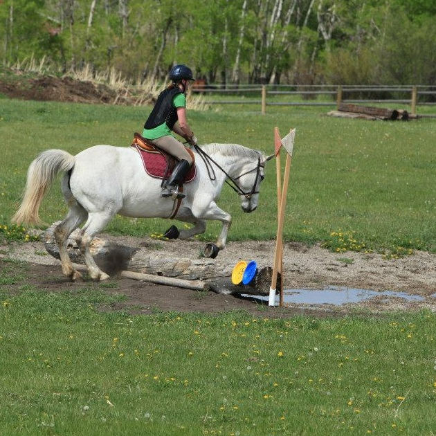 Riding Lessons - We run English AND Western lesson programs. Meggan offers dressage, jumping, and eventing instruction. Jess offers Western horsemanship, reining, and cow working classes.