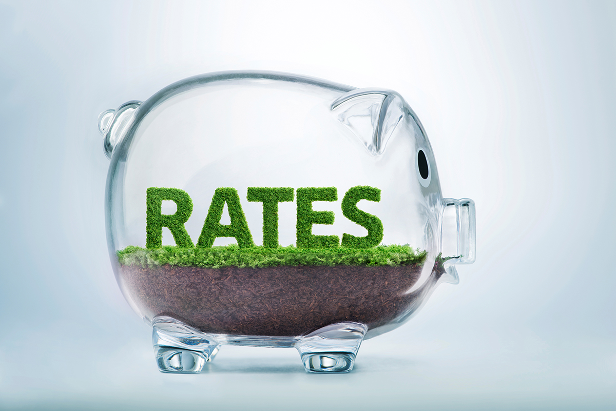 rates_piggy.jpg