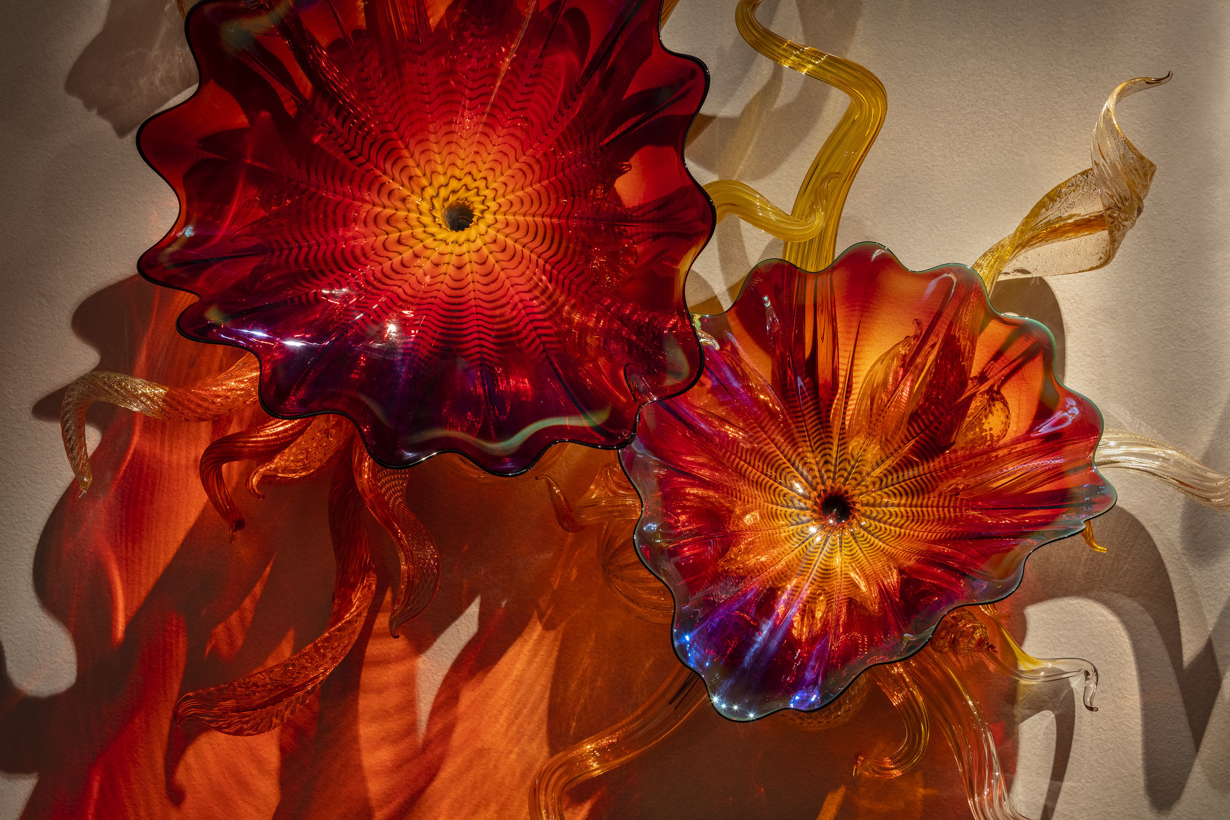 """Dale Chihuly,  Copper Ruby Persian Wall Sconce  (detail), 2019, 61 x 85 x 14"""" ©Chihuly Studio"""