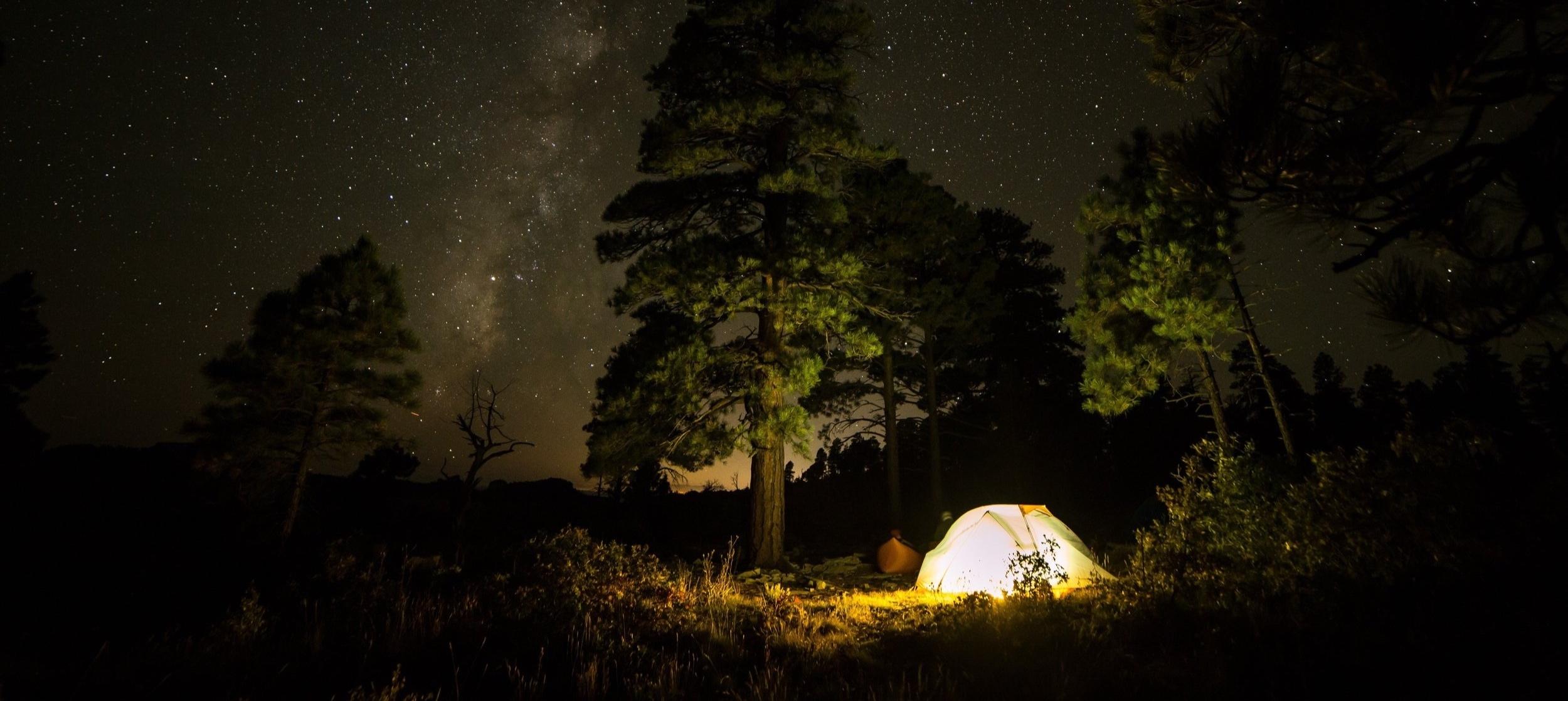 Awaken in nature -