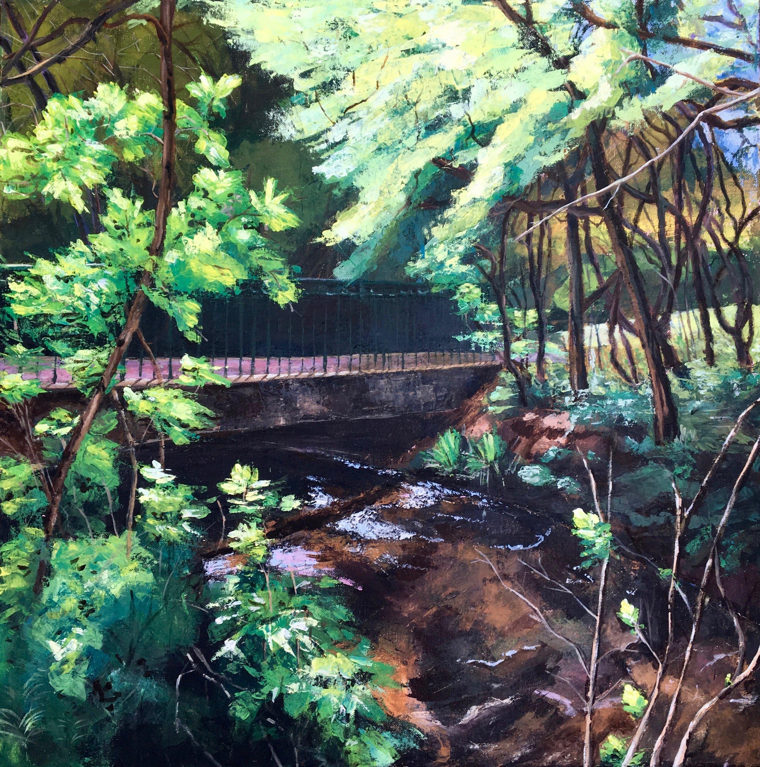 A Footbridge over Dollis Brook - 1