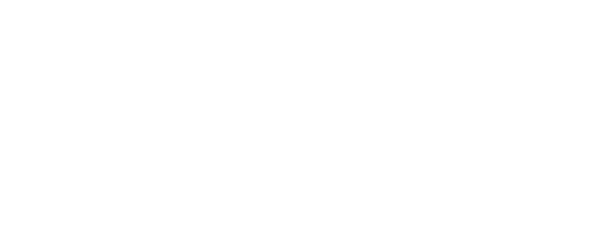 BrunaDörren_logo_vit.png