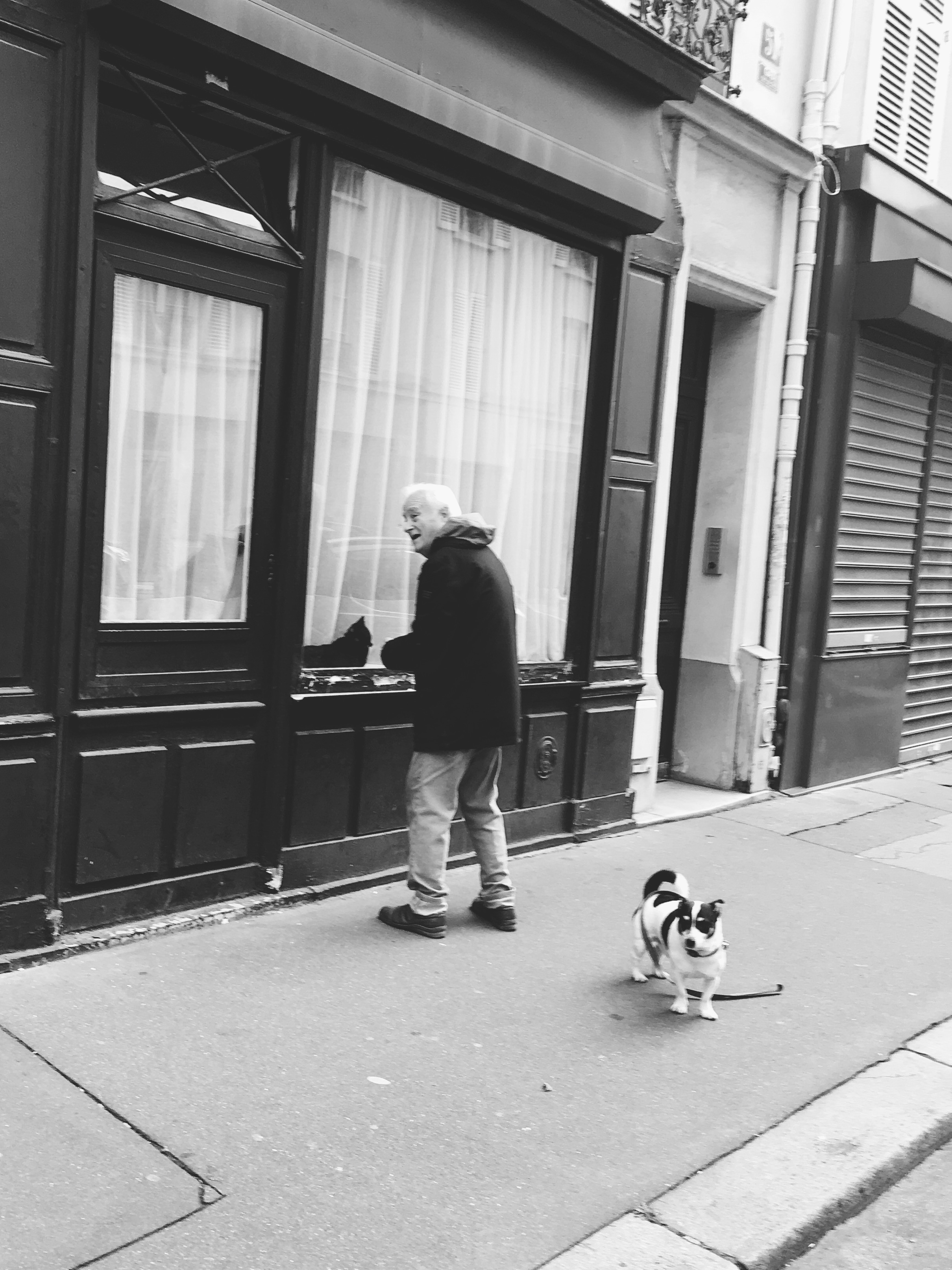 old-man-with-dog-cat.JPG