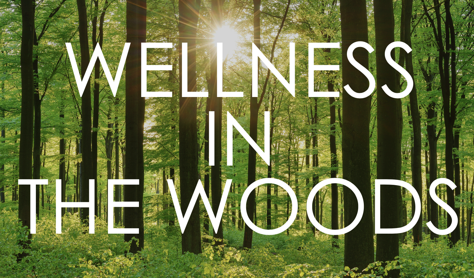wellness in the woods.png