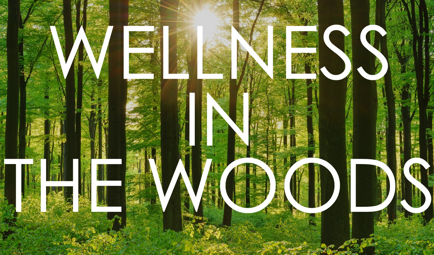 wellness+in+the+woods.jpg