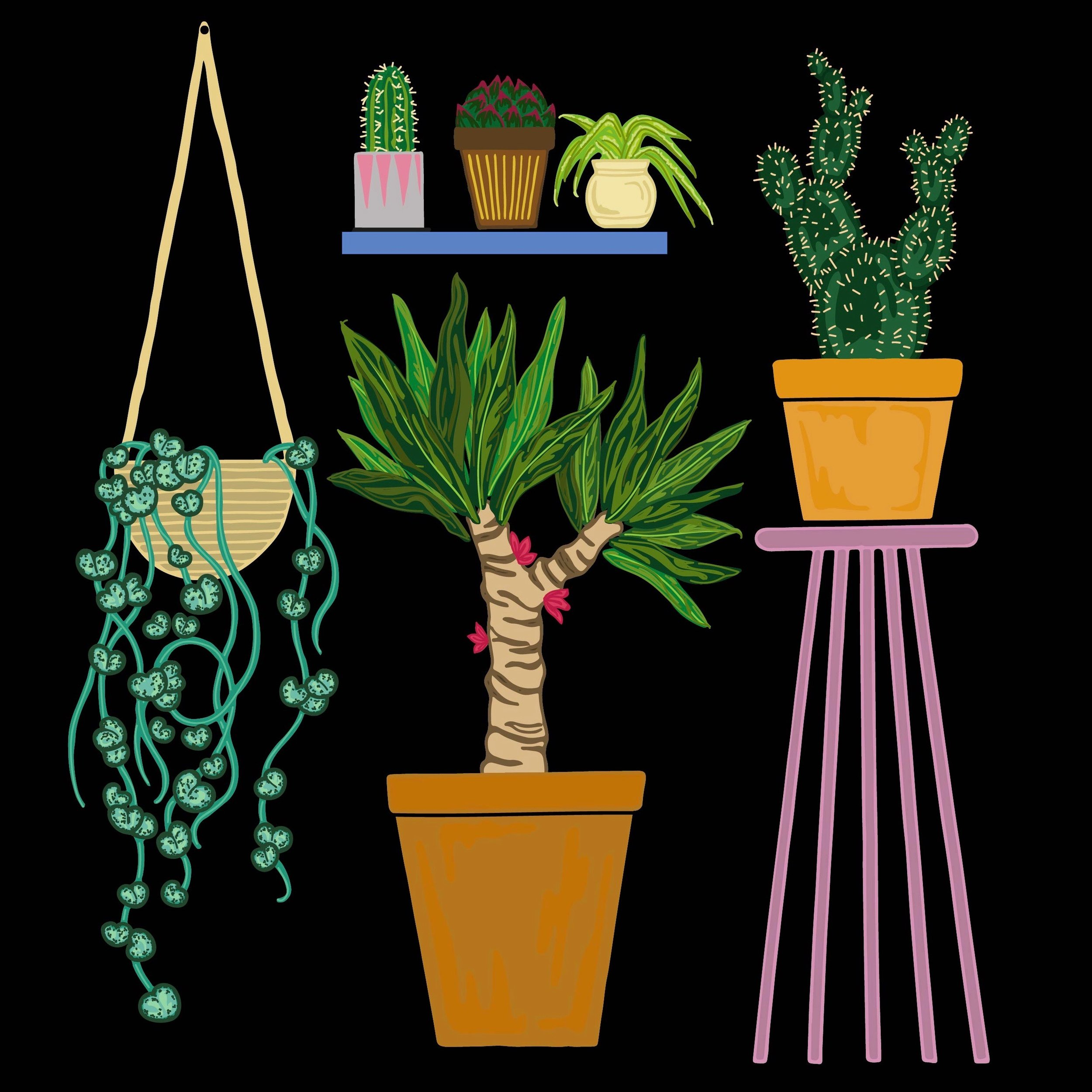 BOTANIC plants icon.jpg