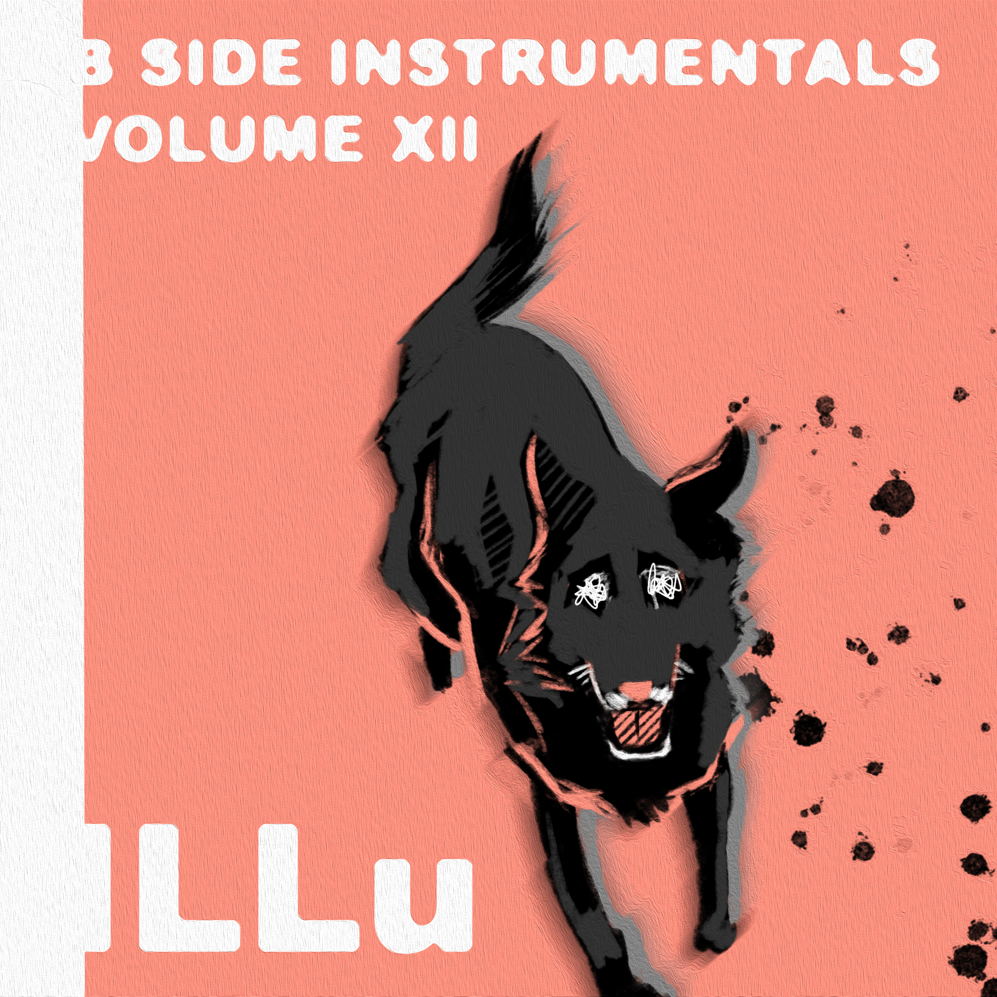 ILLu Cover.jpg