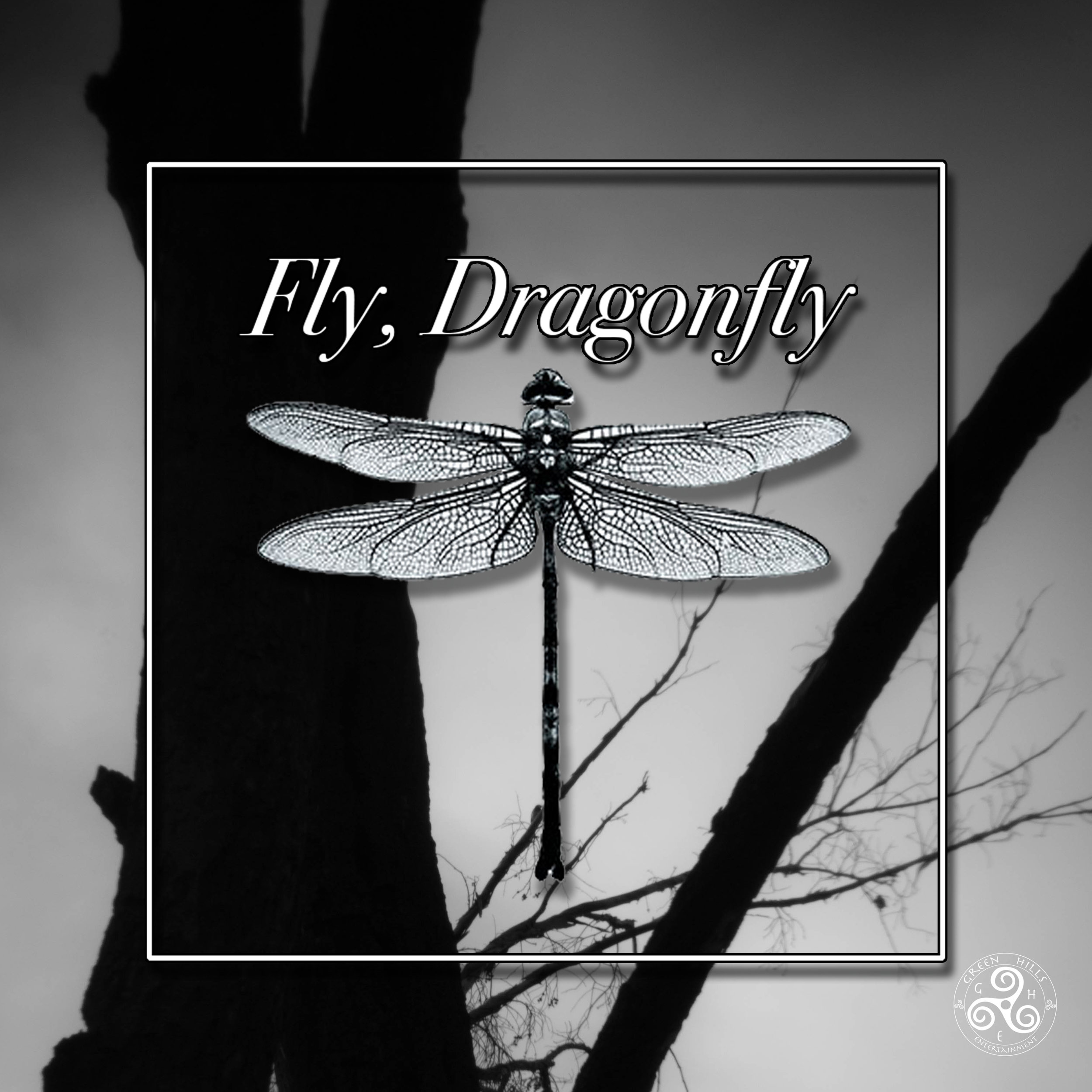 FlyDragonfly1.jpg