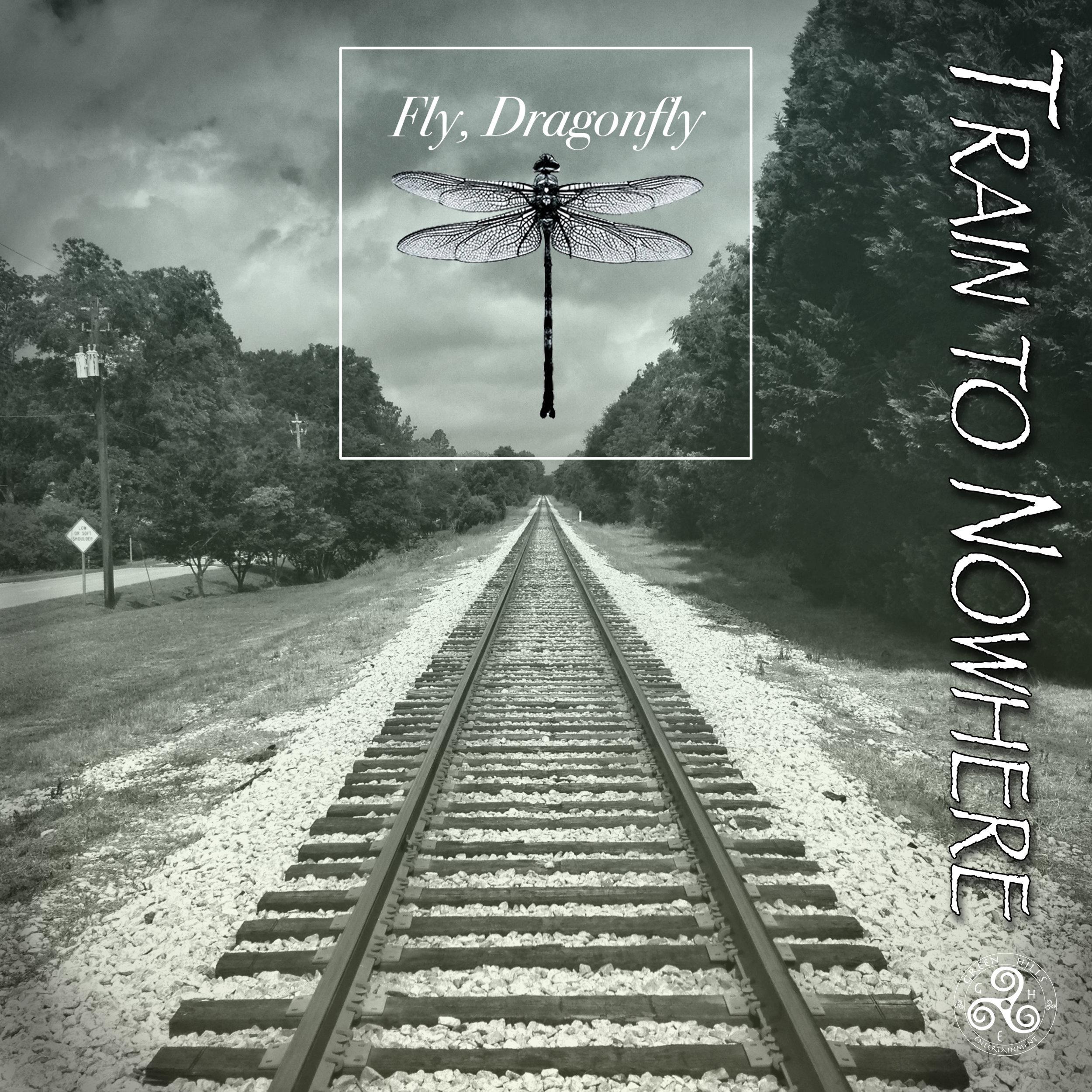 FlyDragonflyAlbums6.jpg