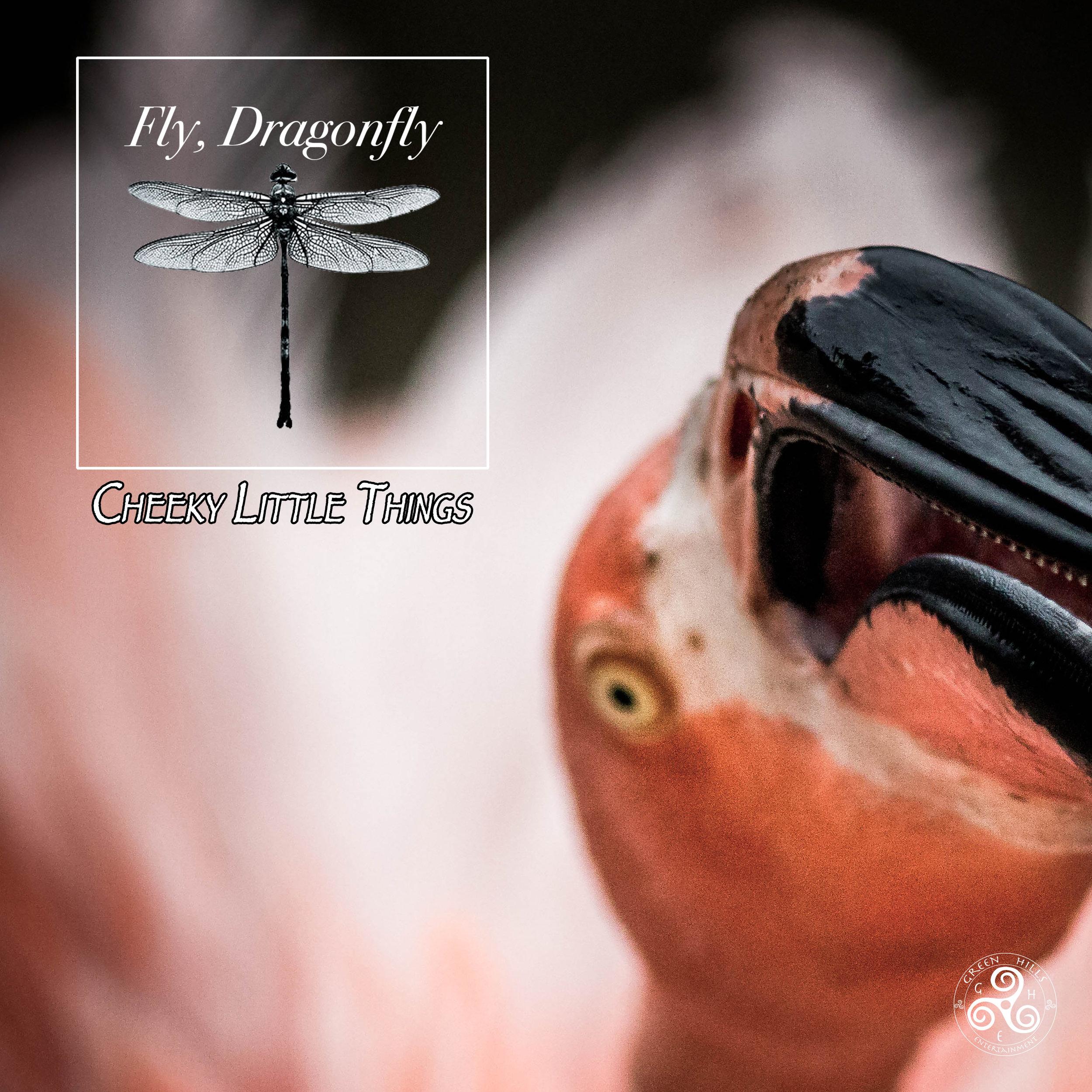 FlyDragonflyAlbums11.jpg