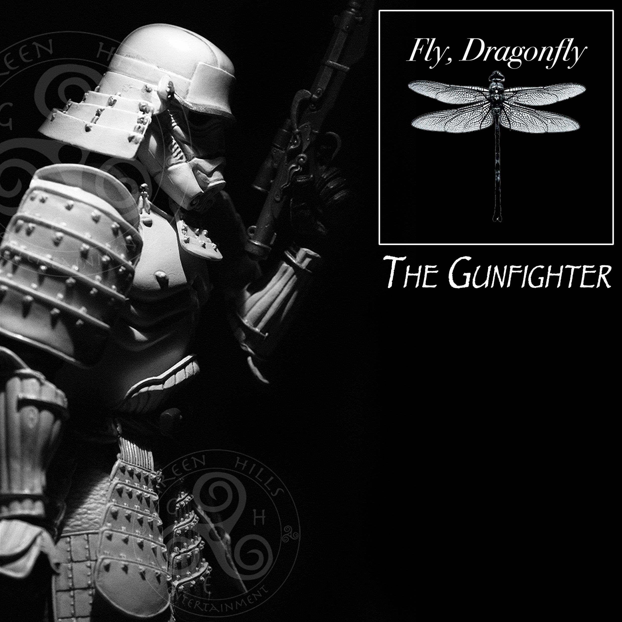 FlyDragonflyAlbums13.jpg