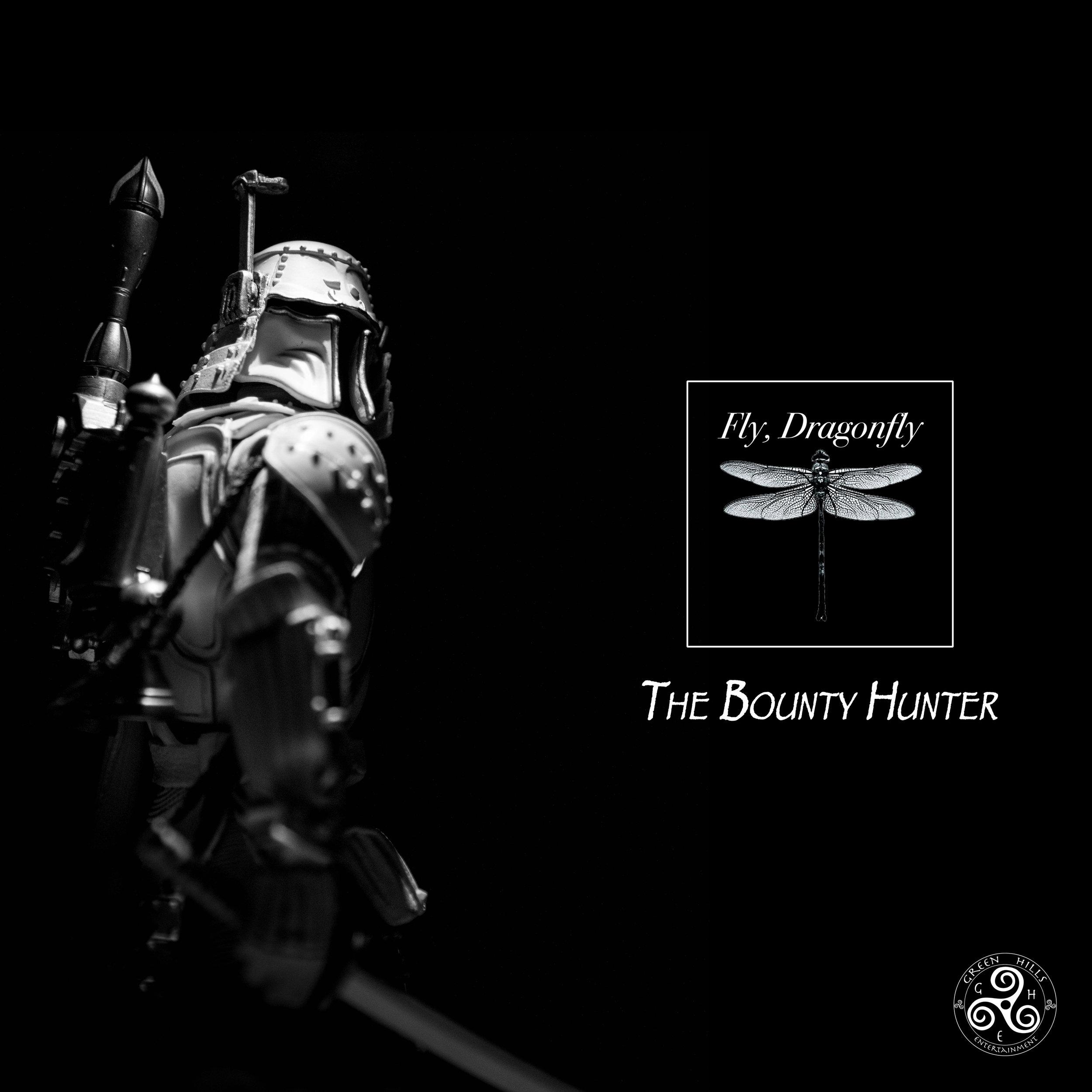 FlyDragonflyAlbums14.jpg
