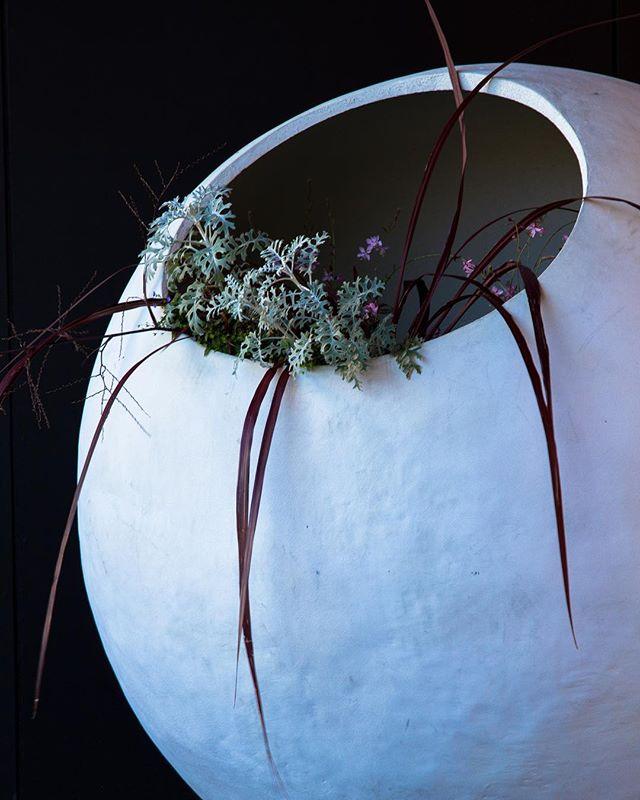 dome planter - 2020 trend forecast
