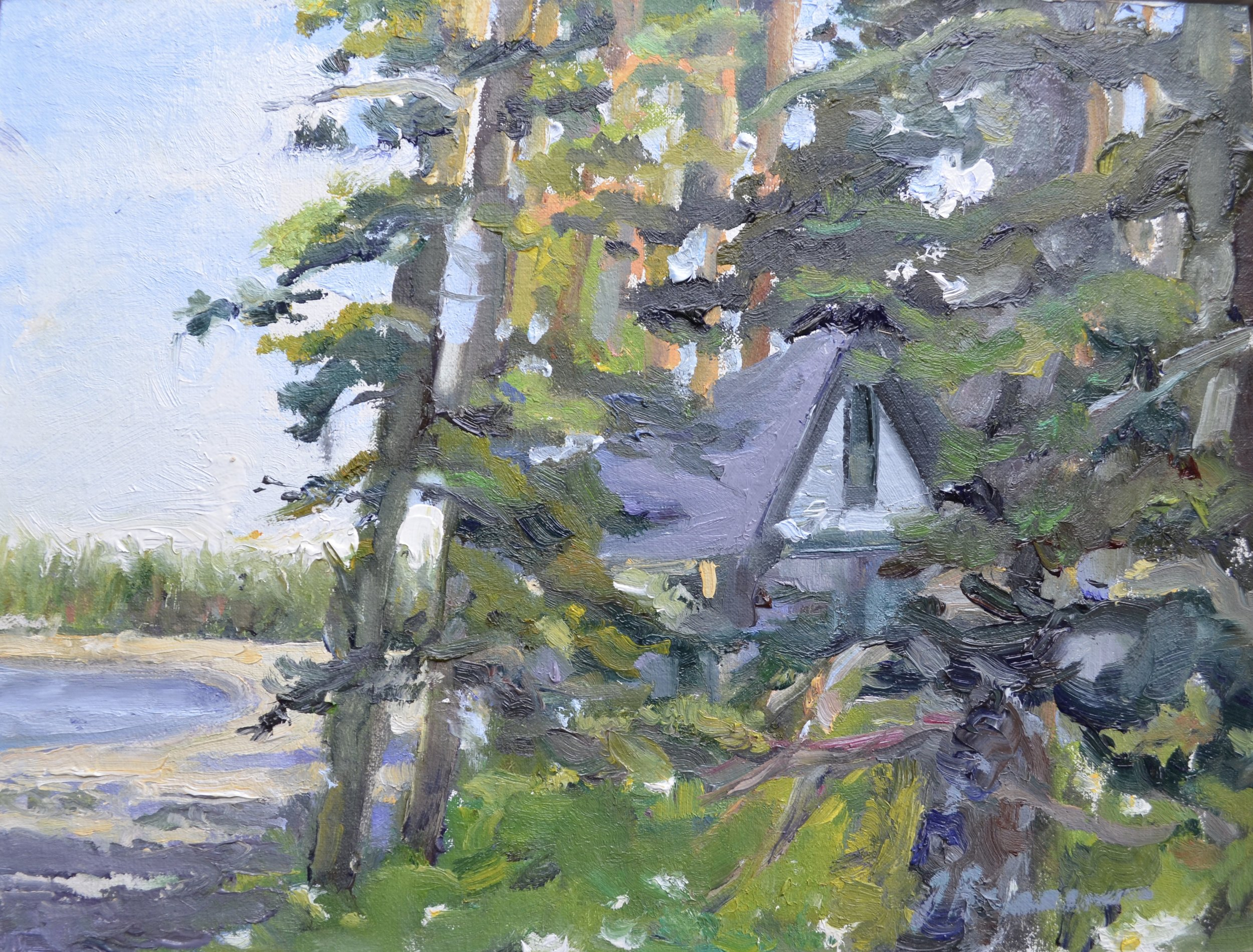House in Trees