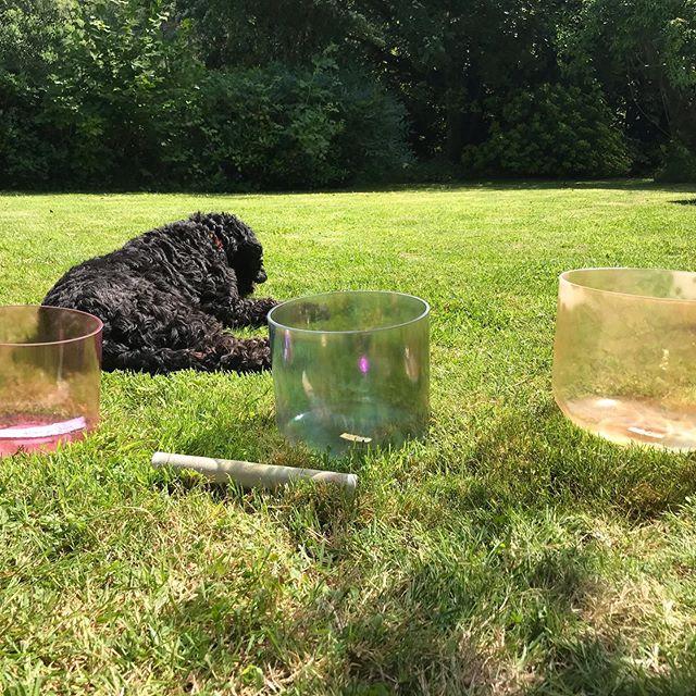 Sunbathing crystal healing bowls #destress #singingbowls #crystalhealing