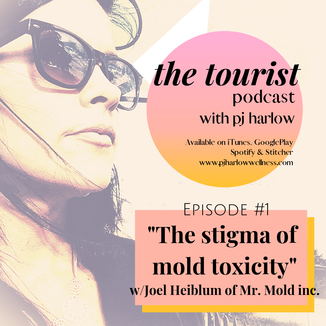 PJ Harlow Wellness — The Stigma surrounding Toxic Mold with