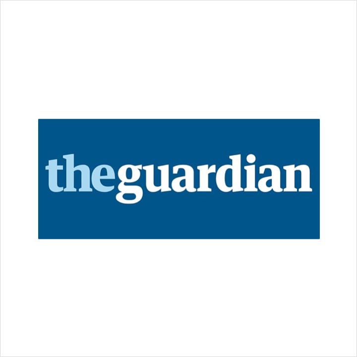 The-Guardian.jpeg