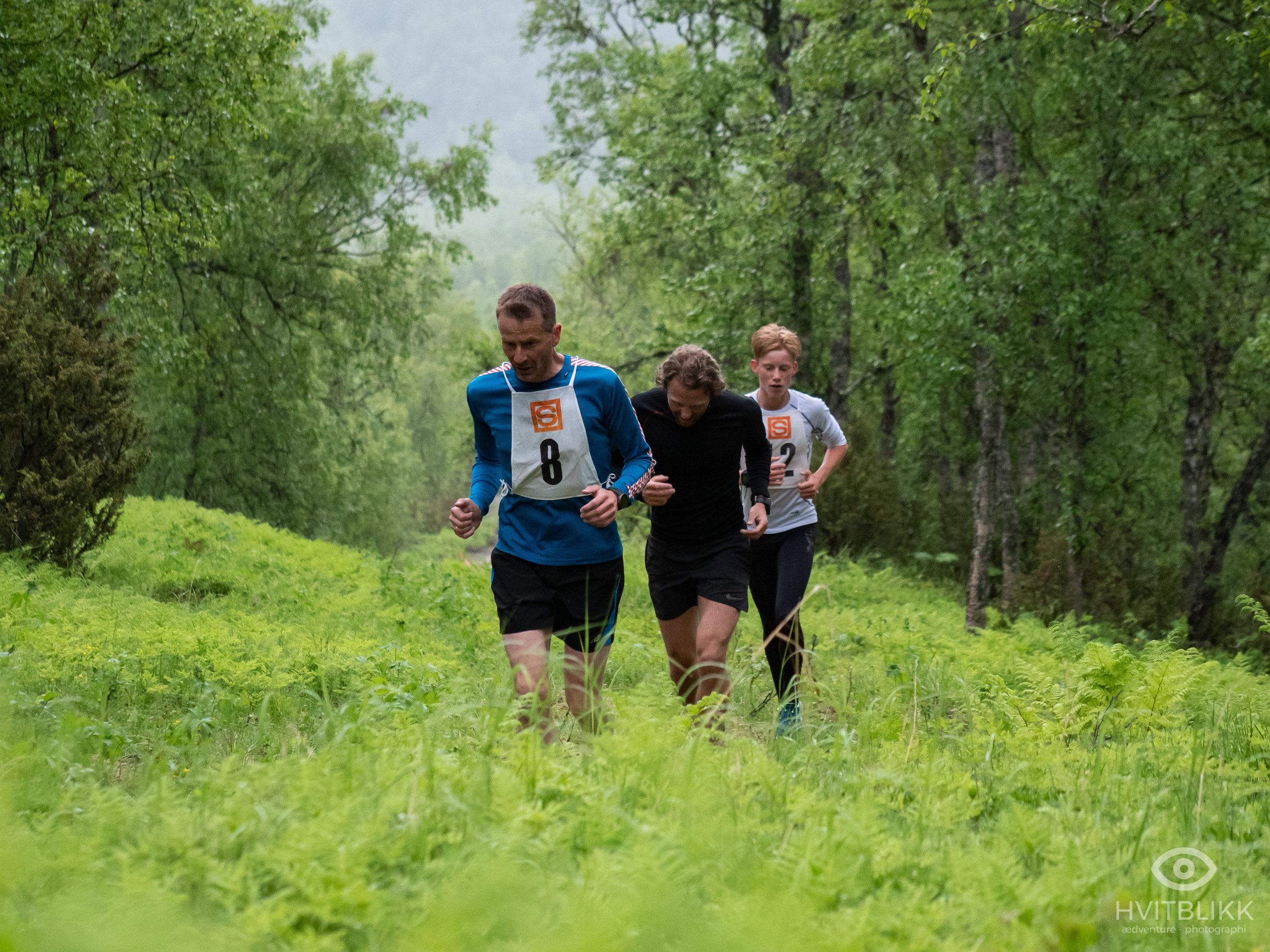 Ellingjord-Hvitblikk_20190621NOR3502.jpg