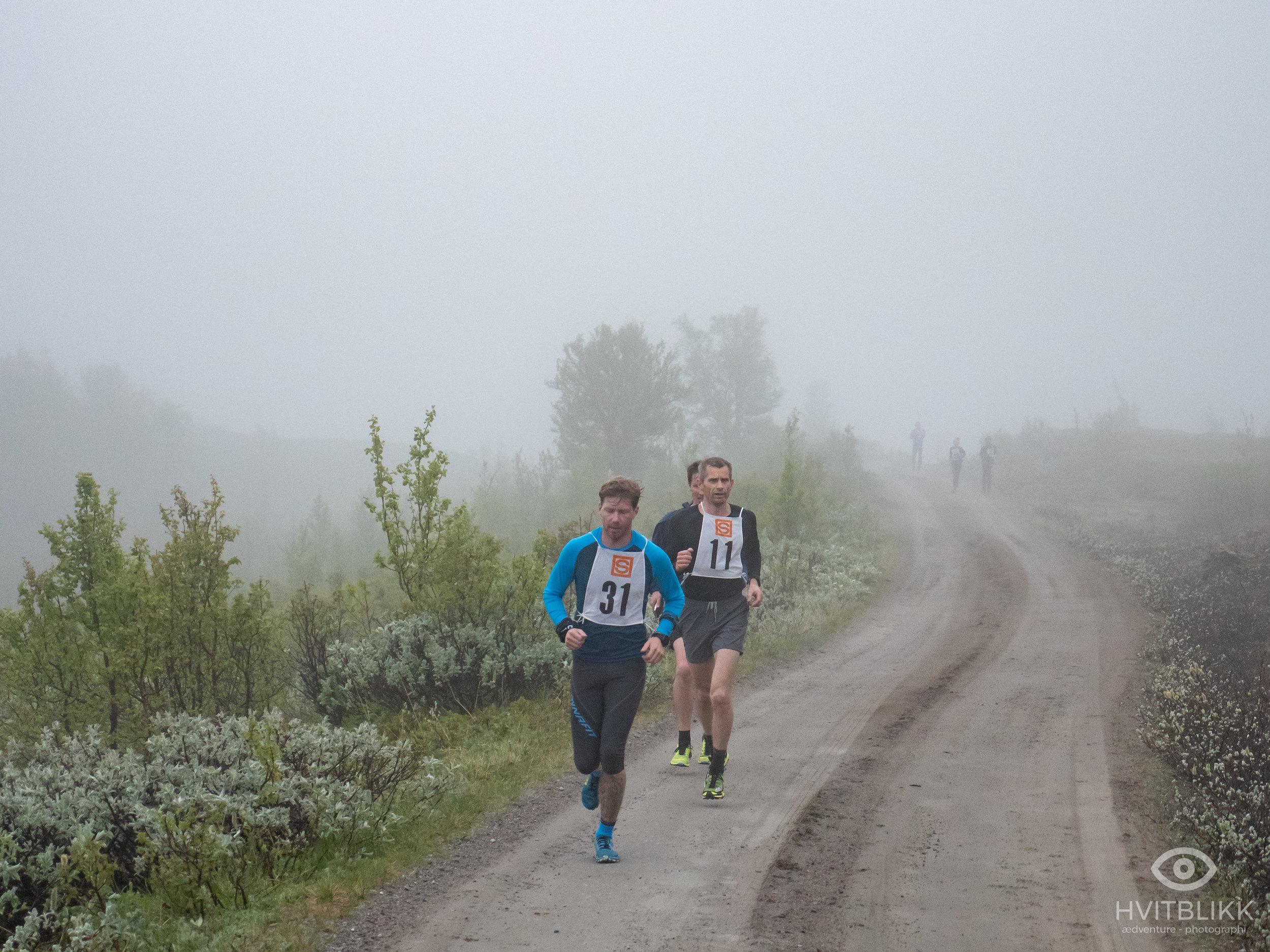 Ellingjord-Hvitblikk_20190621NOR3389.jpg