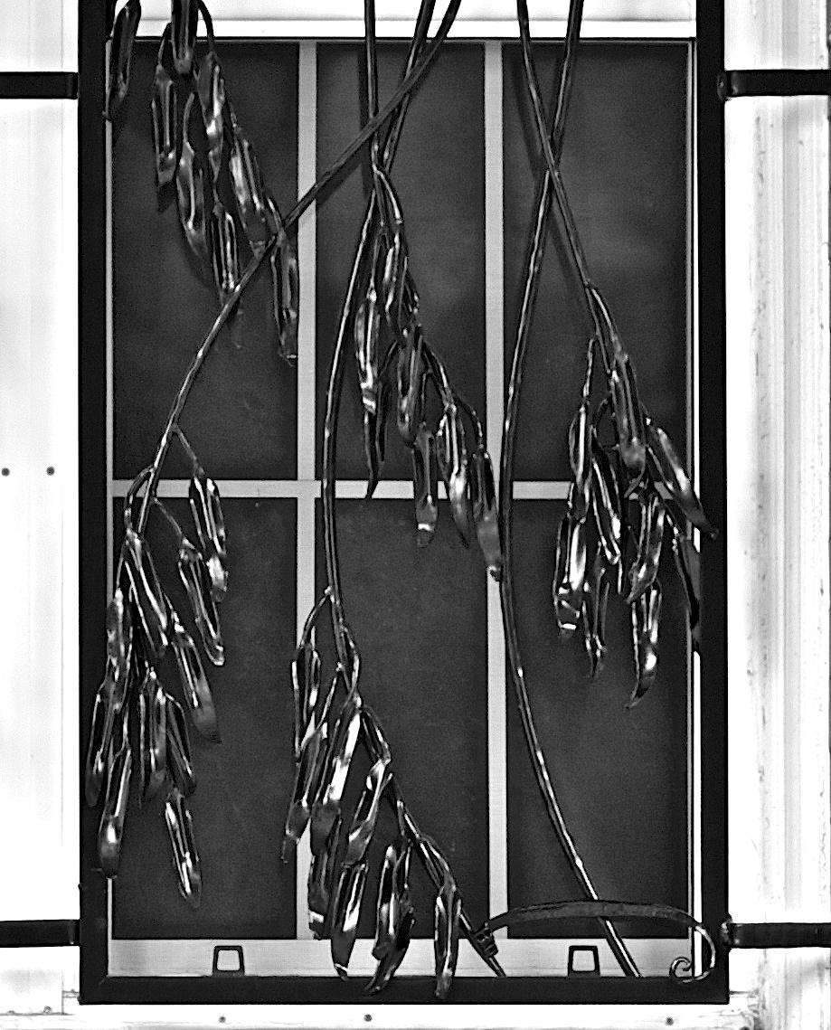 EUCALYPTUS WINDOW GRILL (details)