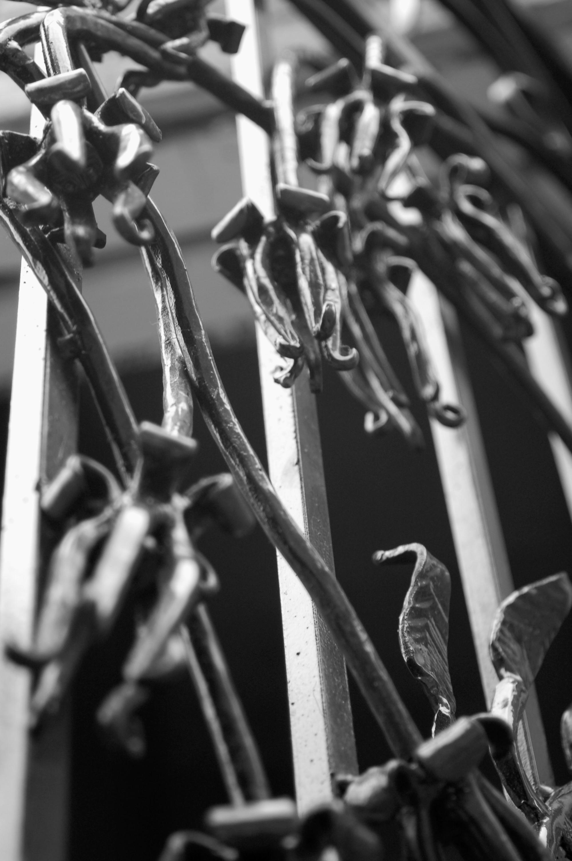 TRUMPET FLOWER GATE (detail)