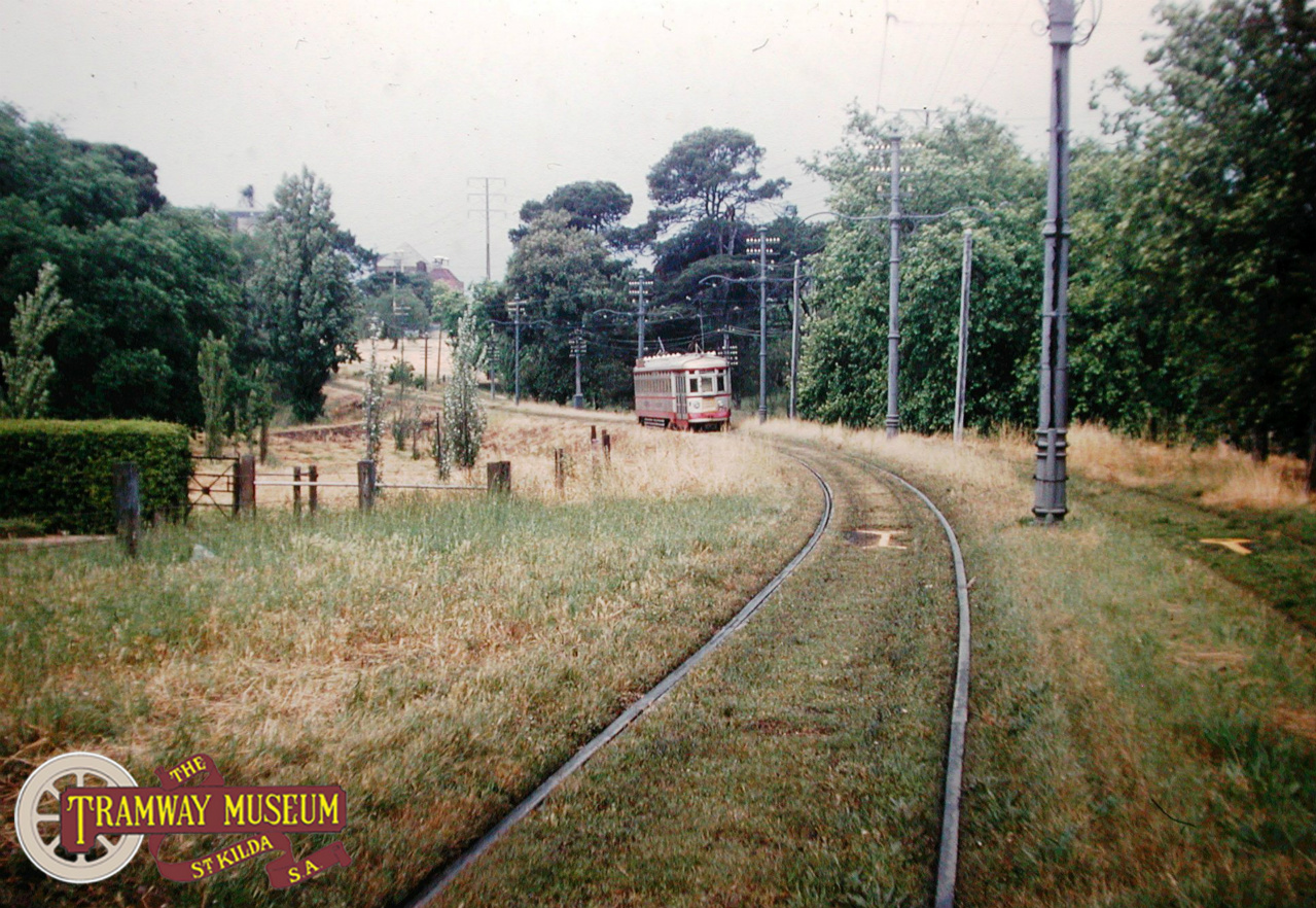 A feature of the Kensington Gardens line was a short section of 'reserve track' that ran through the Eastern Parklands at Rymill Park on an embankment. Seen here is an H type tram on a service leaving the City bound for Kensington Gardens in the mid 1950s. Normally associated with the Glenelg line, the H type trams were a common sight on the line from 1952 until closure in 1957. Photo: Keith Kings.