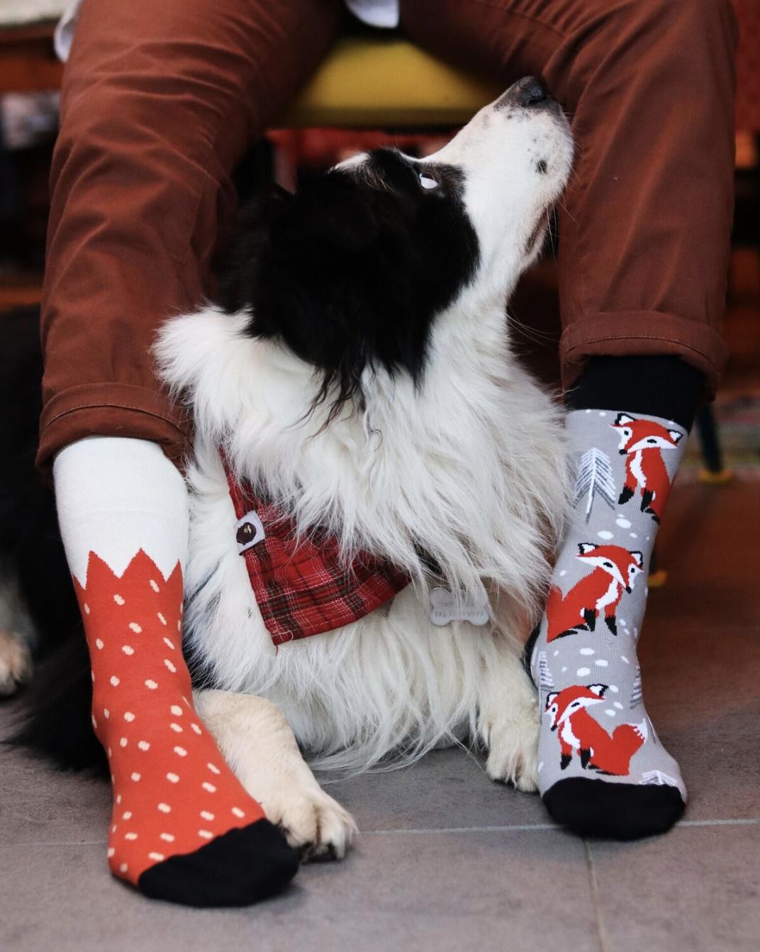 Čo je ponožková výzva - #PonozkovaVyzva sa koná každoročne 21. marca a spája sa so svetovým dňom Downovho syndrómu. V tento deň sa na znak oslavy ľudskej jedinečnosti nosia dve rozdielne ponožky.Výzva je určená všetkým, ktorí chcú prejaviť solidaritu a podporiť ľudí s Downovým syndrómom a ich rodiny. No zároveň sa rozšíri povedomie o tom, že práve ľudská individualita robí tento svet krásnym, pestrejším, zaujímavejším, inšpirujúcim.