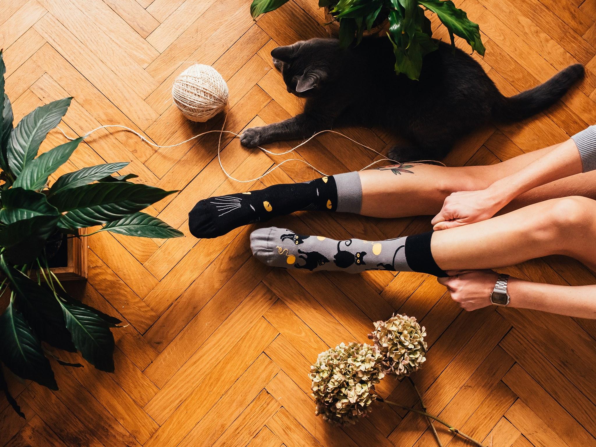 Prečo ponožky? - Rozdielne ponožky sa stali symbolom Svetového dňa Downovho syndrómu preto, lebo chromozóm má tvar ponožky. Dátum 21. 3. je taktiež symbolický, pretože ľudia s Downovým syndrómom majú o jeden 21. chromozóm naviac. Namiesto dvoch ich majú až tri. Genetická porucha sa odborne nazýva trizómia 21. chromozómu. PS: Majú niečo navyše, ale nevyvyšujú sa :-)