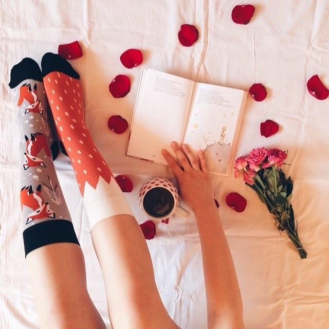 """Tvoj najobľúbenejší citát z Malého princa?  Náš je tento: """"Čas, ktorý si venoval svojej ruži, robí tvoju ružu takou dôležitou."""" povedala líška ... #dnesnosim #veseleponozky #lisky #malyprinc #dnescitam"""