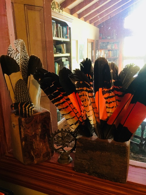 in my study-Feathers from my favourite visitors, the Red Tailed Black Cockatoos.