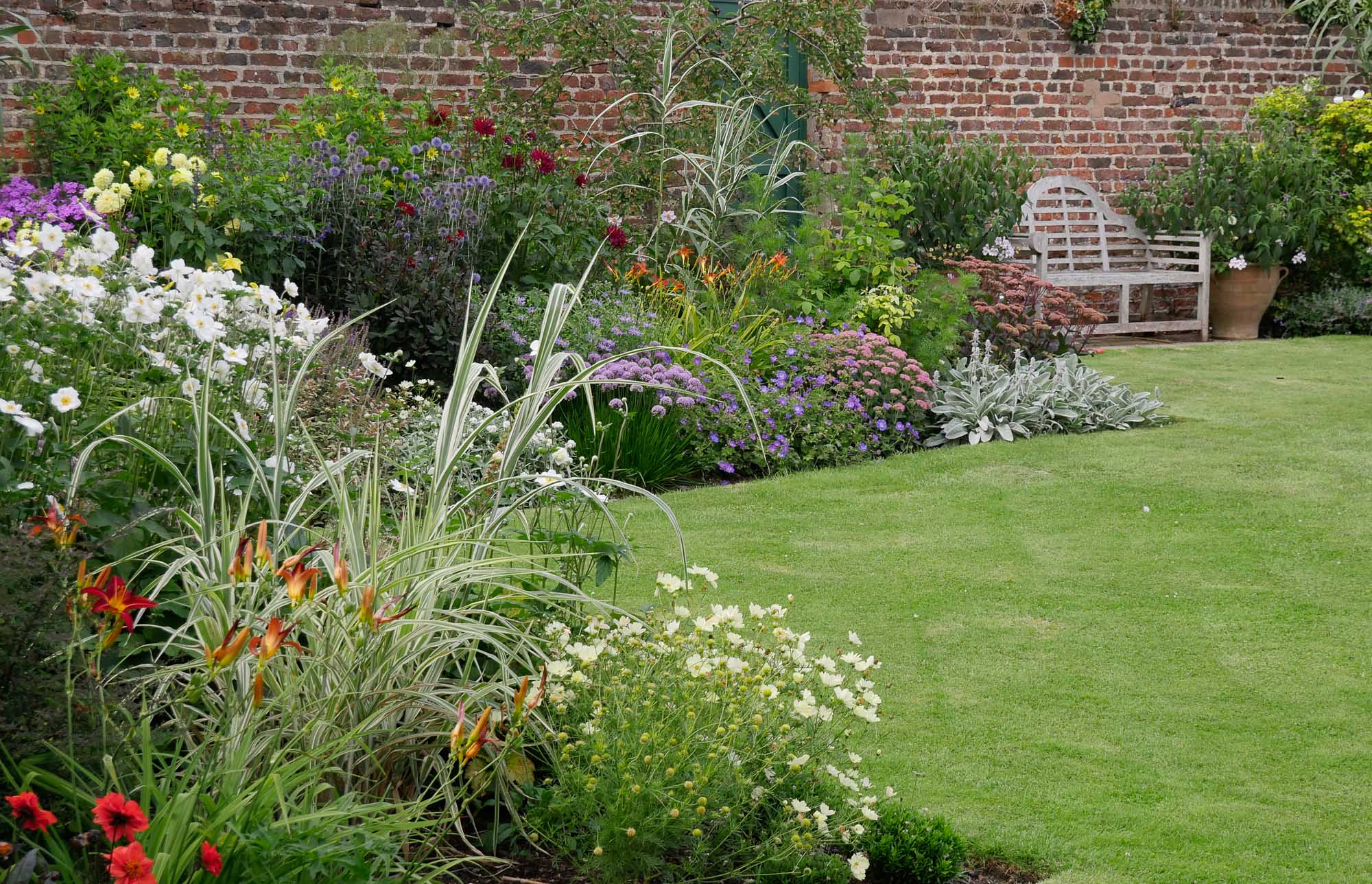 A large mixed border in late summer.  Dahlias and pale yellow Cosmos join with herbaceous perennials to form a rich tapestry of colour, with contrasting foliage of a variegated grass (Miscanthus)