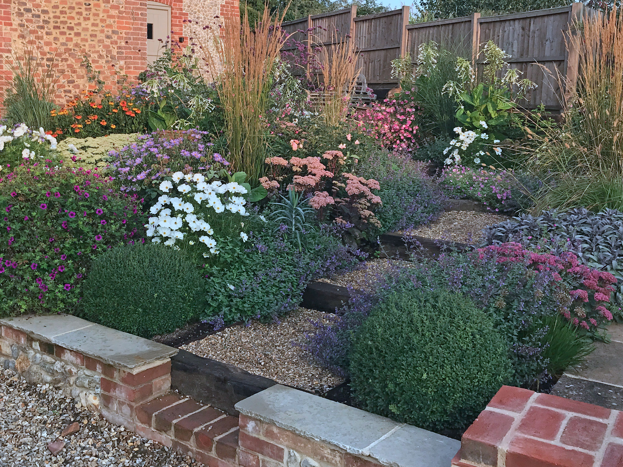 At the start of September, Sedums, Geranium and other perennials are still going strong, ably supported by tobacco and Cosmos