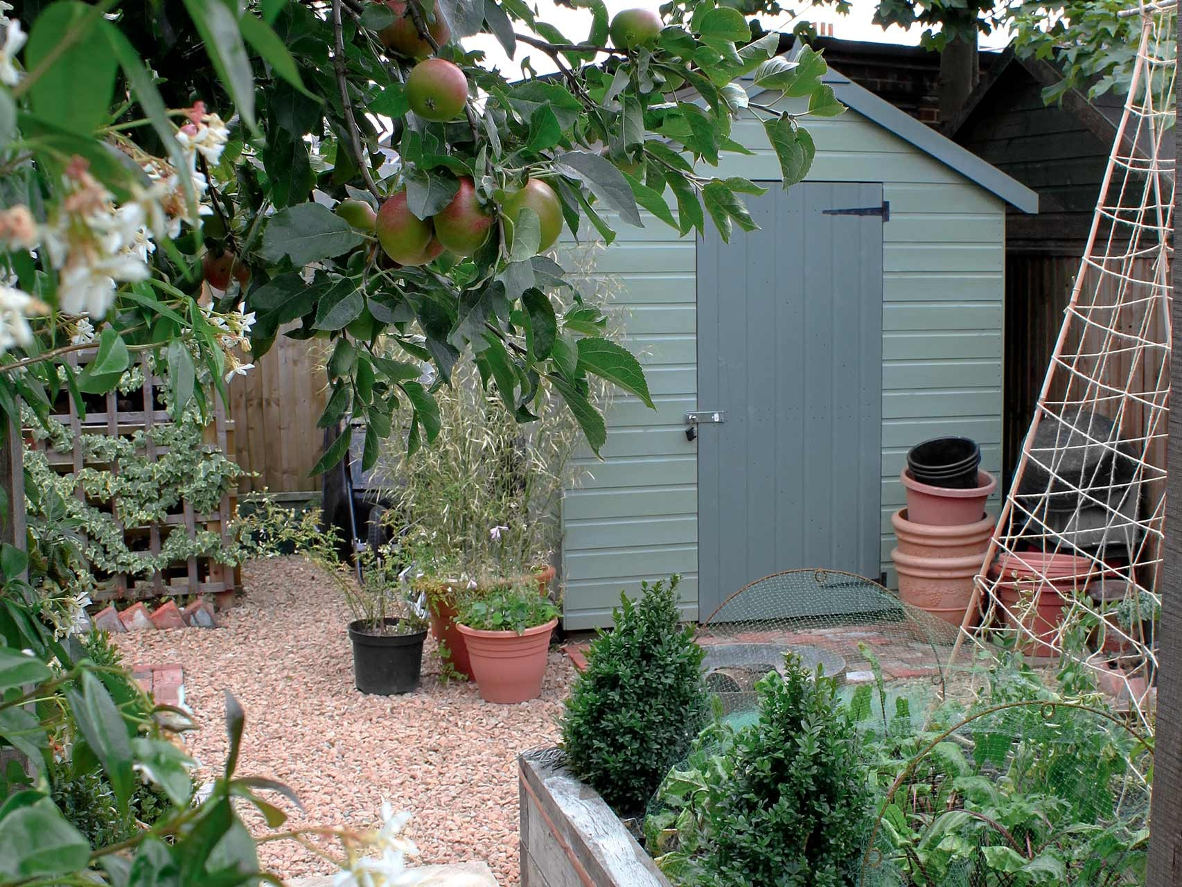 Project-3-shed.jpg