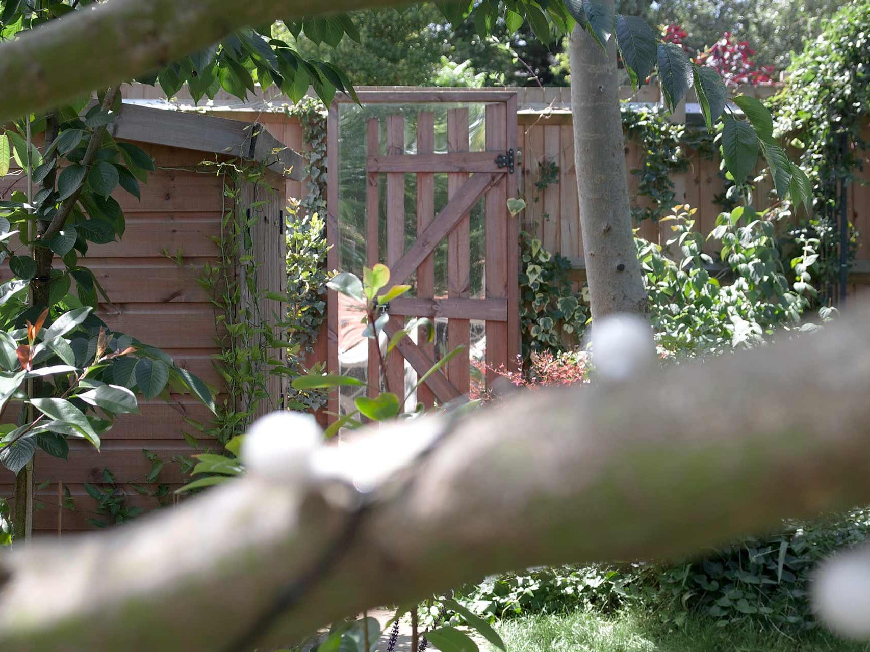 Project-7-fence.jpg