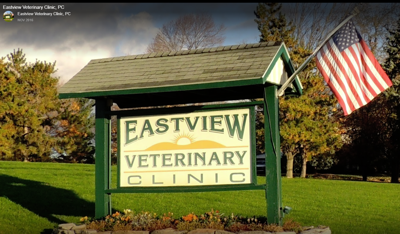 Eastview Veterinary Clinic - Eastview Veterinary Clinic sponsors HSYC's Trap-Neuter-Return clinics by providing the veterinary expertise and operating rooms for those events.