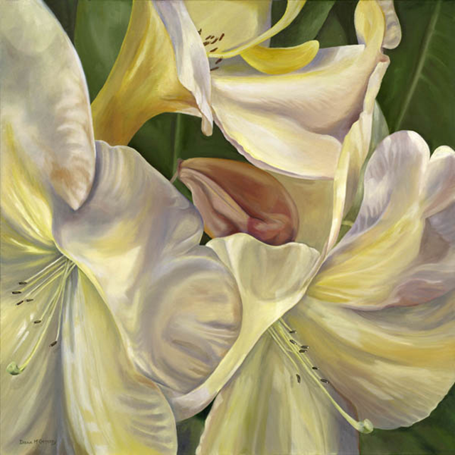 YellowLillie_WEB.png