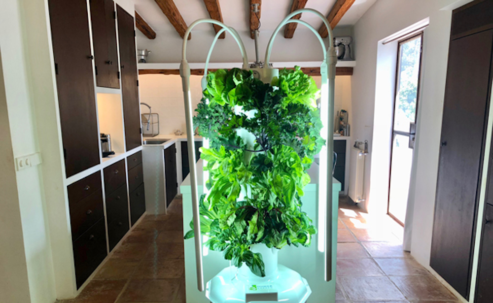 Grow Your Own Food - Only $45/month for all the cleaner than organic nutrition you want!Have full control over what goes into the growth of your favorite produce and grow it yourself. Conducive for both indoor and outdoor growing.