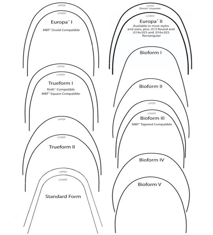 multiple arch forms.png