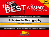 best-of-western-washington-pet-photographer-julie-austin-2012.jpg