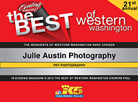 best-of-western-washington-pet-photographer-julie-austin-2013.jpg