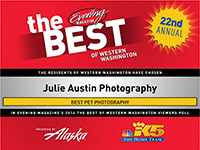best-of-western-washington-pet-photographer-julie-austin-2014.jpg